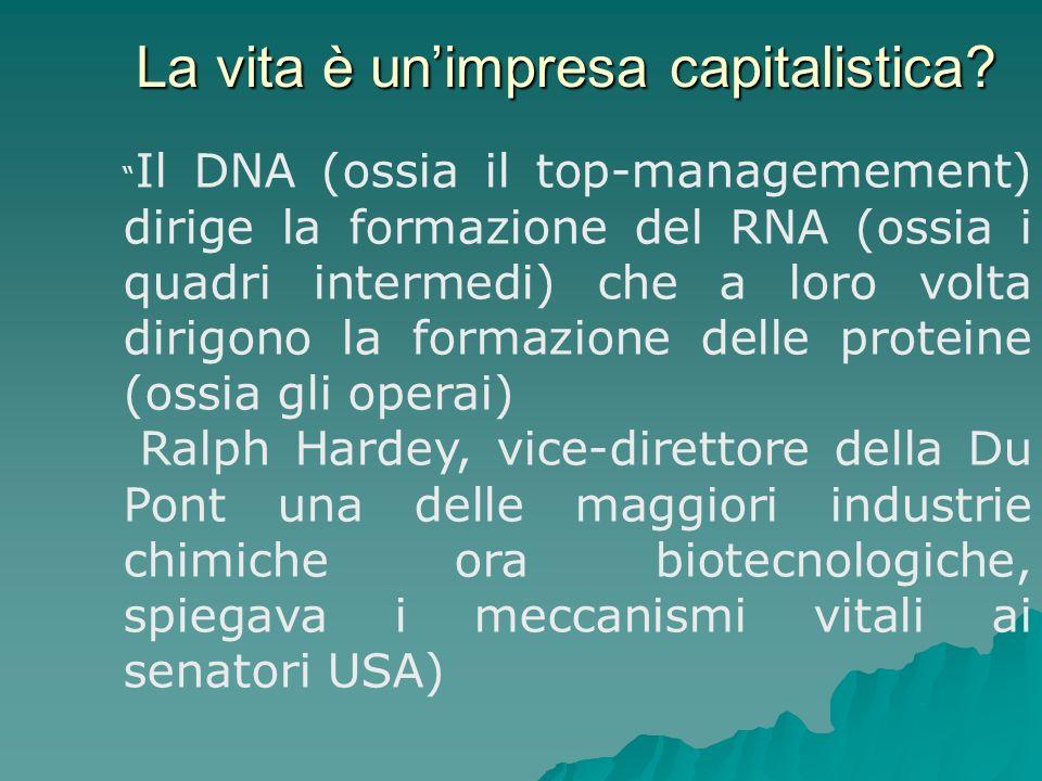 La vita è unimpresa capitalistica? Il DNA (ossia il top-managemement) dirige la formazione del RNA (ossia i quadri intermedi) che a loro volta dirigon