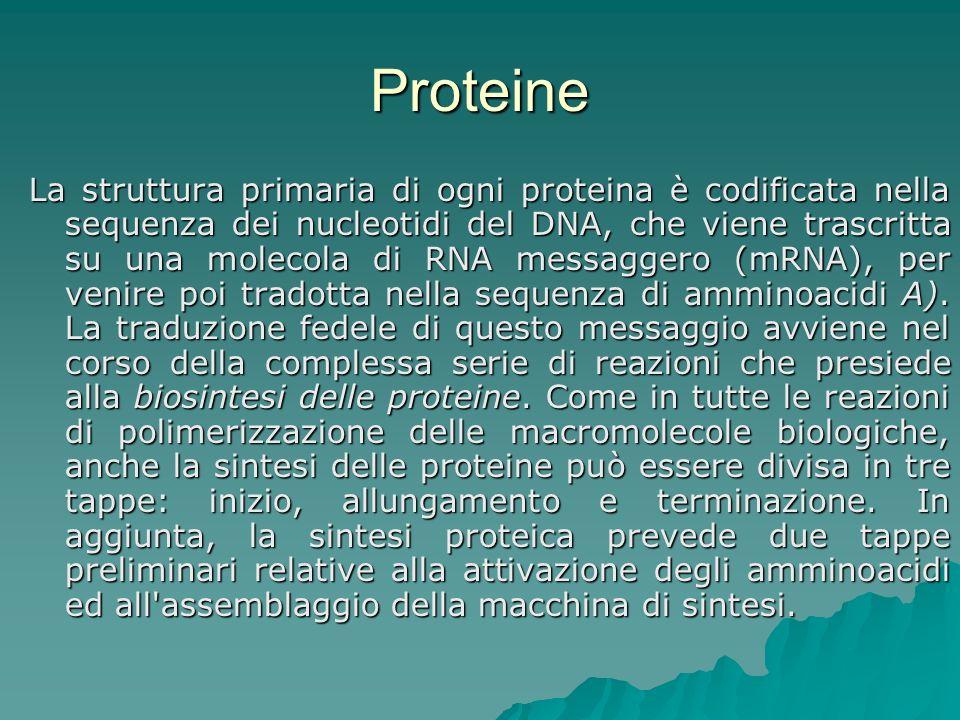 Embrione Grumo di cellule (riduzionismo) Grumo di cellule (riduzionismo) Portio viscerum (riduzionismo verso femminismo) Portio viscerum (riduzionismo verso femminismo) Programma genetico (riduzionismo verso olismo) Programma genetico (riduzionismo verso olismo) Potenzialità biologica (riduzionismo verso olismo) Potenzialità biologica (riduzionismo verso olismo) Individuo ma non persona (olismo- Corte cost.