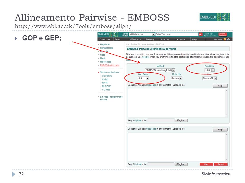 Allineamento Pairwise - EMBOSS http://www.ebi.ac.uk/Tools/emboss/align/ Bioinformatica22 GOP e GEP;