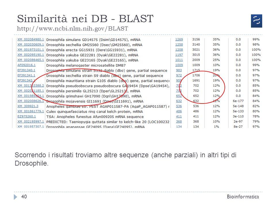 Similarità nei DB - BLAST http://www.ncbi.nlm.nih.gov/BLAST Bioinformatica40 Scorrendo i risultati troviamo altre sequenze (anche parziali) in altri t