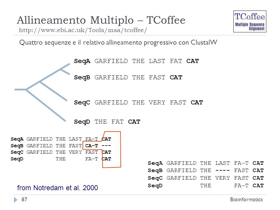 Allineamento Multiplo – TCoffee http://www.ebi.ac.uk/Tools/msa/tcoffee/ Bioinformatica87 Quattro sequenze e il relativo allineamento progressivo con C
