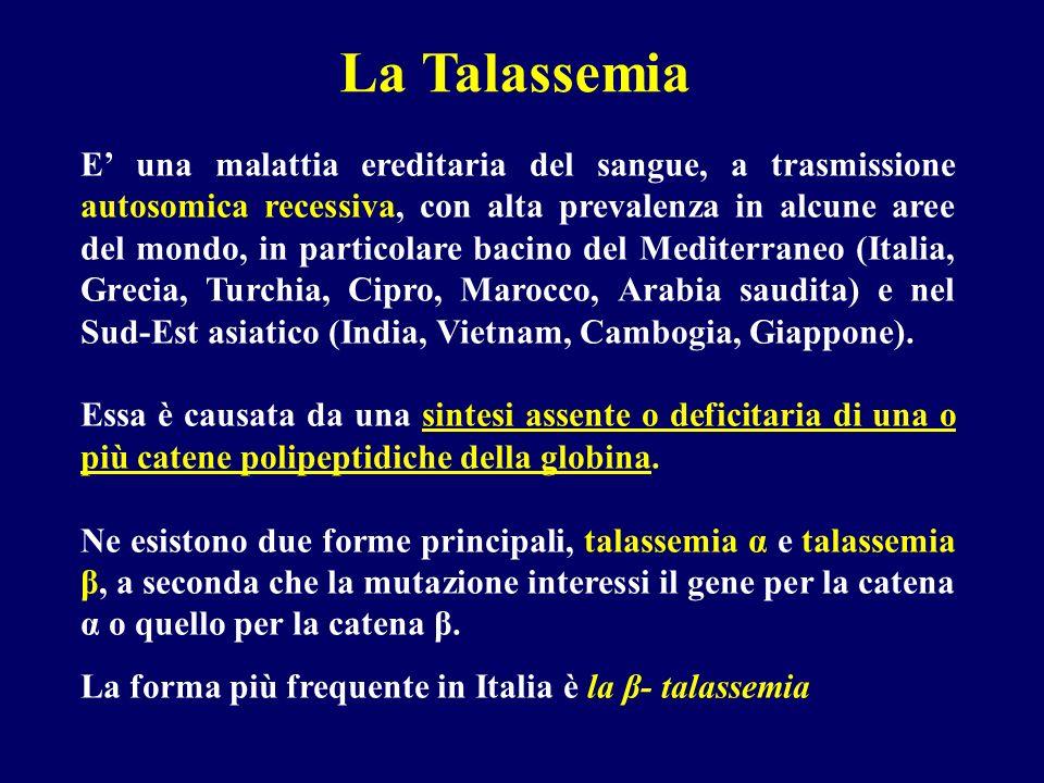QUADRO EMATOLOGICO Hb 4-6 g/dl Globuli rossi 2.000.000/mmc Presenza di eritroblasti ortocromatici nel sangue periferico Anisopoichilocitosi, cellule a bersaglio Leucociti e piastrine normali o ridotti per sequestro splenico Resistenza globulari aumentate Iperplasia eritroblastica midollare Hb F: 70-90% Hb A 2 > 3.5% Talassemia major