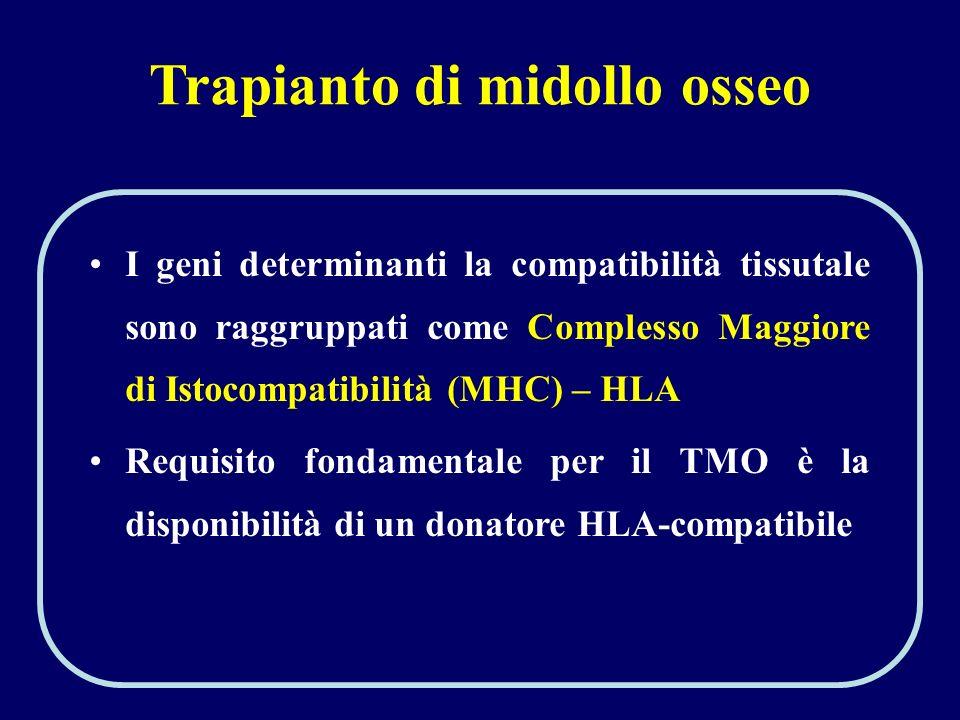 Trapianto di midollo osseo I geni determinanti la compatibilità tissutale sono raggruppati come Complesso Maggiore di Istocompatibilità (MHC) – HLA Re