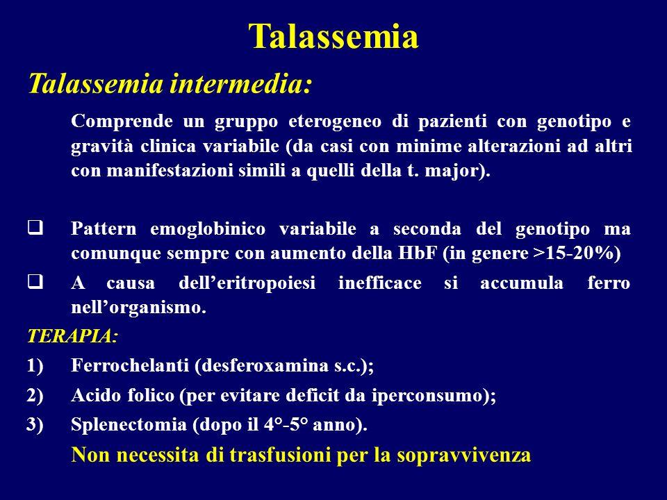 Talassemia Talassemia intermedia: Comprende un gruppo eterogeneo di pazienti con genotipo e gravità clinica variabile (da casi con minime alterazioni