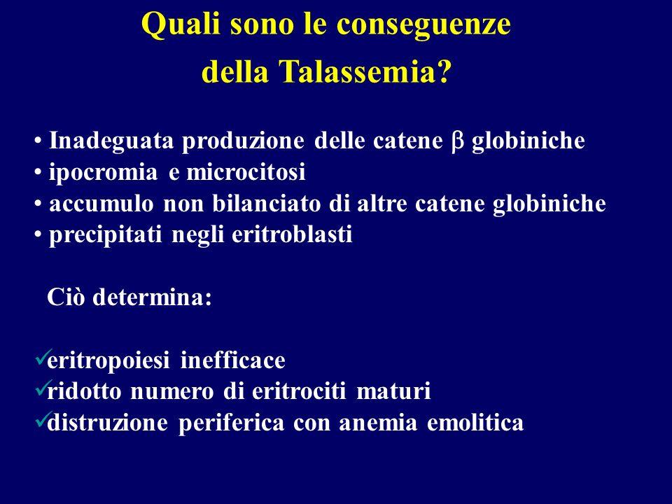 TERAPIA DELLA TALASSEMIA MAJOR Terapia trasfusionale (target: Hb > 10.5- 11 g/dL) Terapia chelante del ferro Splenectomia Trapianto di cellule staminali emopoietiche allogeniche