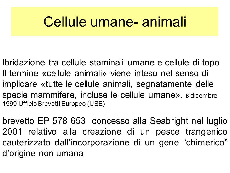 Cellule umane- animali Ibridazione tra cellule staminali umane e cellule di topo Il termine «cellule animali» viene inteso nel senso di implicare «tut