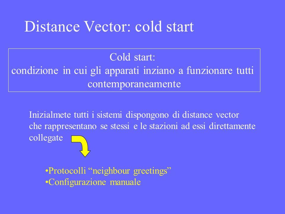 Distance Vector: cold start Cold start: condizione in cui gli apparati inziano a funzionare tutti contemporaneamente Inizialmete tutti i sistemi dispo