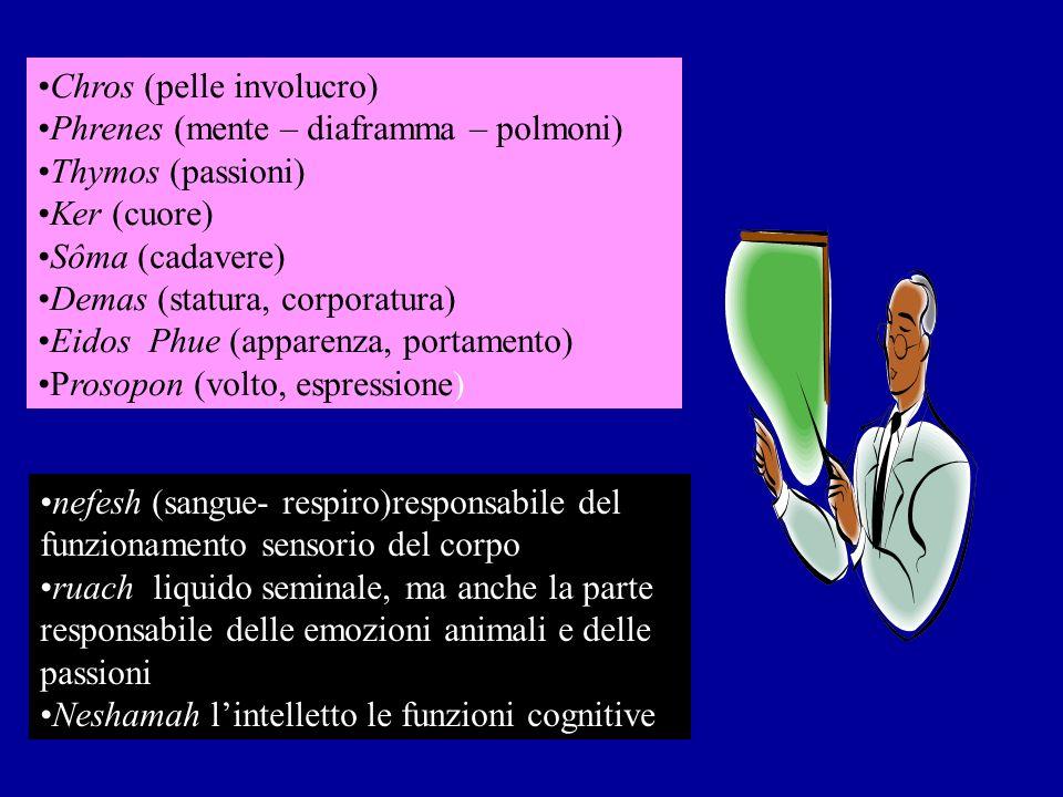 Chros (pelle involucro) Phrenes (mente – diaframma – polmoni) Thymos (passioni) Ker (cuore) Sôma (cadavere) Demas (statura, corporatura) Eidos Phue (apparenza, portamento) Prosopon (volto, espressione) nefesh (sangue- respiro)responsabile del funzionamento sensorio del corpo ruach liquido seminale, ma anche la parte responsabile delle emozioni animali e delle passioni Neshamah lintelletto le funzioni cognitive