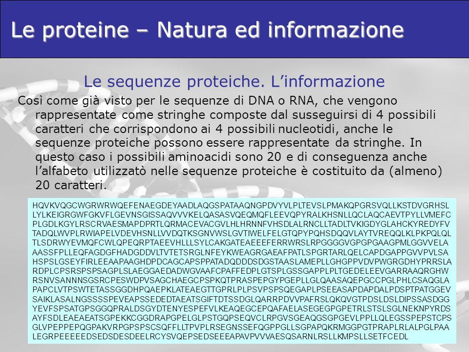 Le sequenze proteiche. Linformazione Così come già visto per le sequenze di DNA o RNA, che vengono rappresentate come stringhe composte dal susseguirs