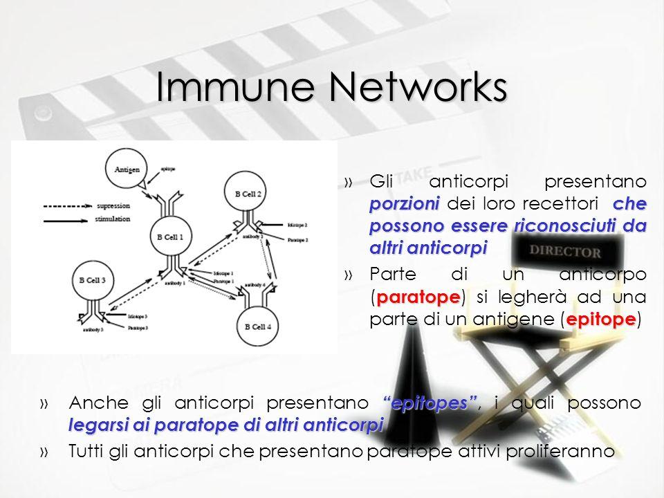 Immune Networks porzioniche possono essere riconosciuti da altri anticorpi »Gli anticorpi presentano porzioni dei loro recettori che possono essere ri