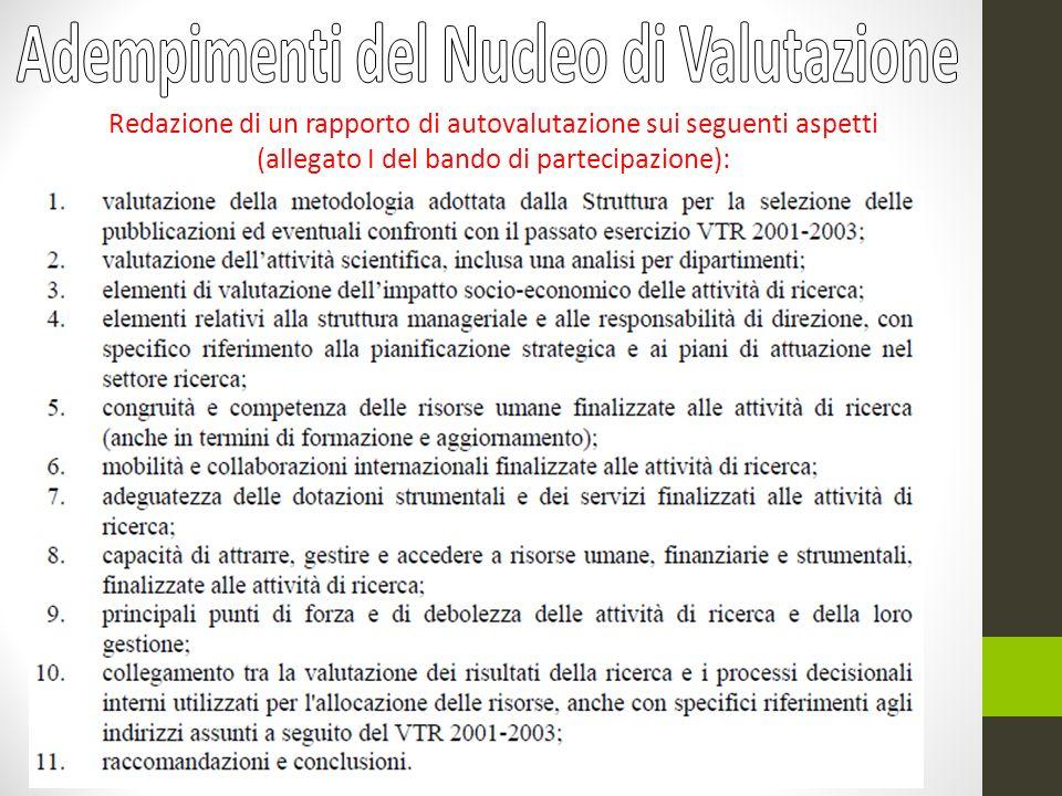 Redazione di un rapporto di autovalutazione sui seguenti aspetti (allegato I del bando di partecipazione):