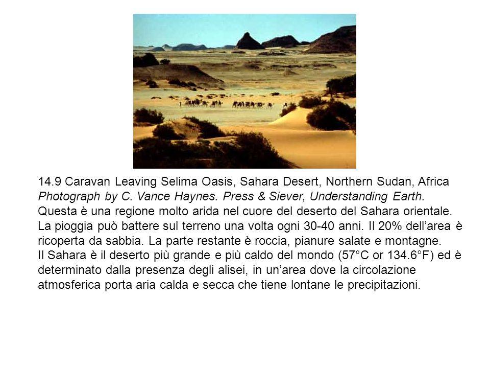 14.9 Caravan Leaving Selima Oasis, Sahara Desert, Northern Sudan, Africa Photograph by C. Vance Haynes. Press & Siever, Understanding Earth. Questa è