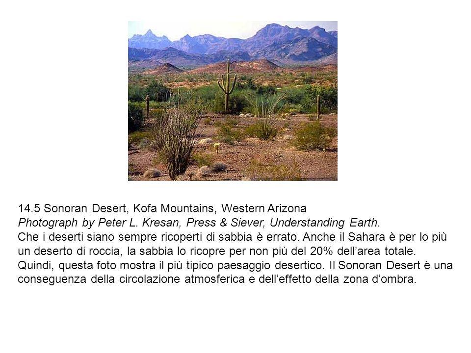 14.5 Sonoran Desert, Kofa Mountains, Western Arizona Photograph by Peter L. Kresan, Press & Siever, Understanding Earth. Che i deserti siano sempre ri