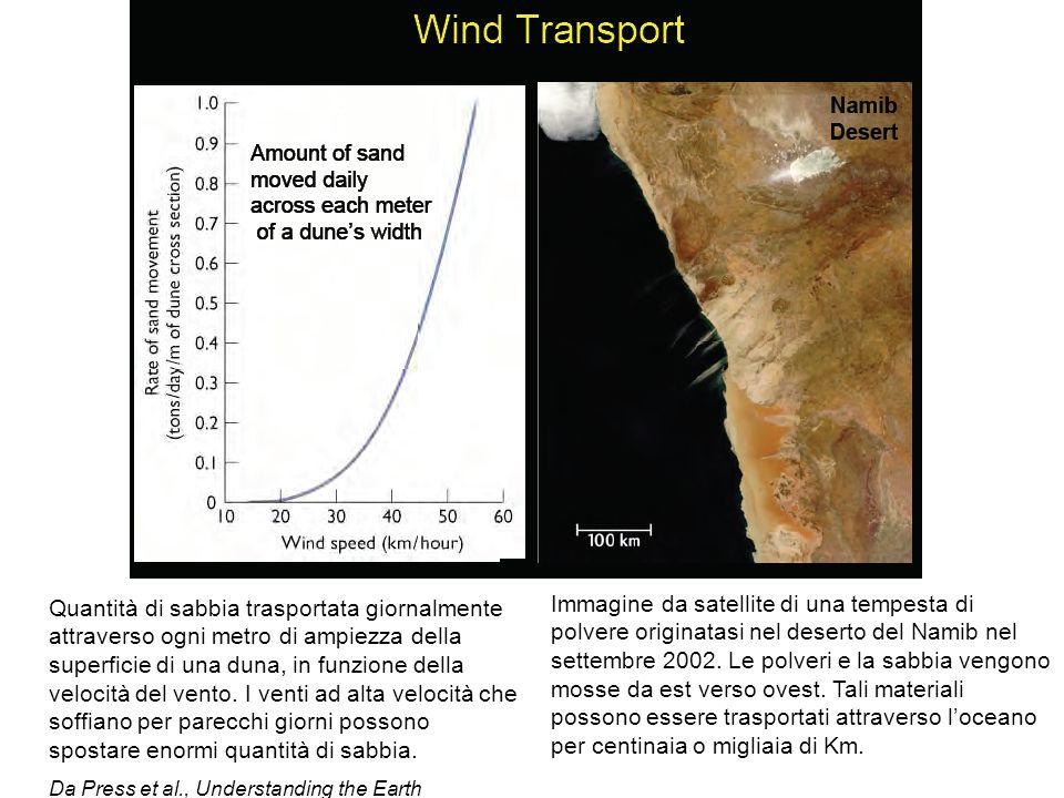 Quantità di sabbia trasportata giornalmente attraverso ogni metro di ampiezza della superficie di una duna, in funzione della velocità del vento. I ve
