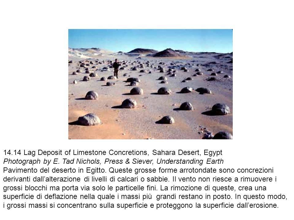 14.14 Lag Deposit of Limestone Concretions, Sahara Desert, Egypt Photograph by E. Tad Nichols, Press & Siever, Understanding Earth Pavimento del deser