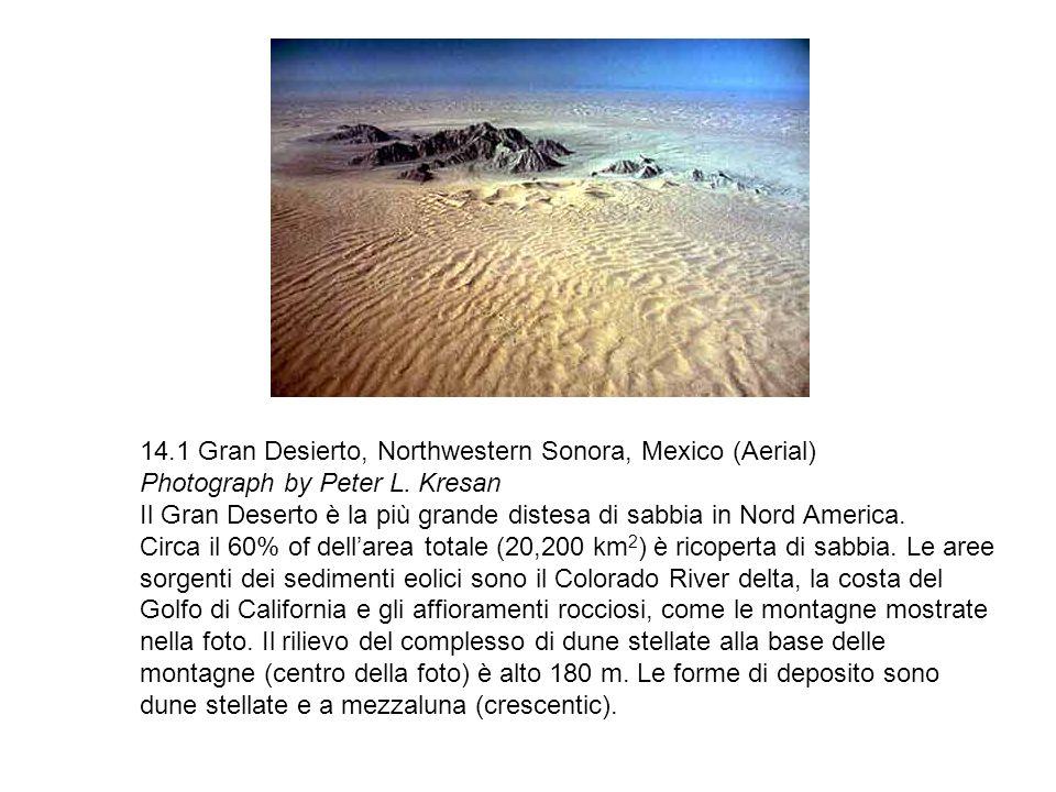 14.1 Gran Desierto, Northwestern Sonora, Mexico (Aerial) Photograph by Peter L. Kresan Il Gran Deserto è la più grande distesa di sabbia in Nord Ameri