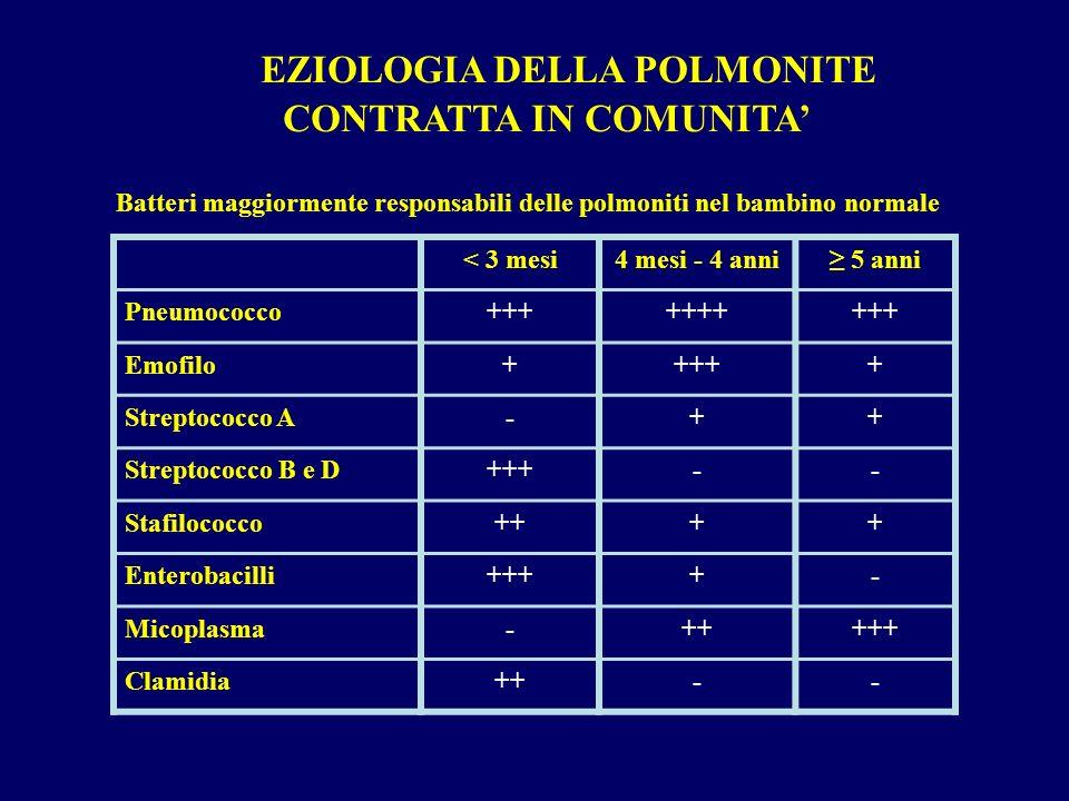 < 3 mesi4 mesi - 4 anni 5 anni Pneumococco++++++++++ Emofilo+++++ Streptococco A-++ Streptococco B e D+++-- Stafilococco++++ Enterobacilli++++- Micopl
