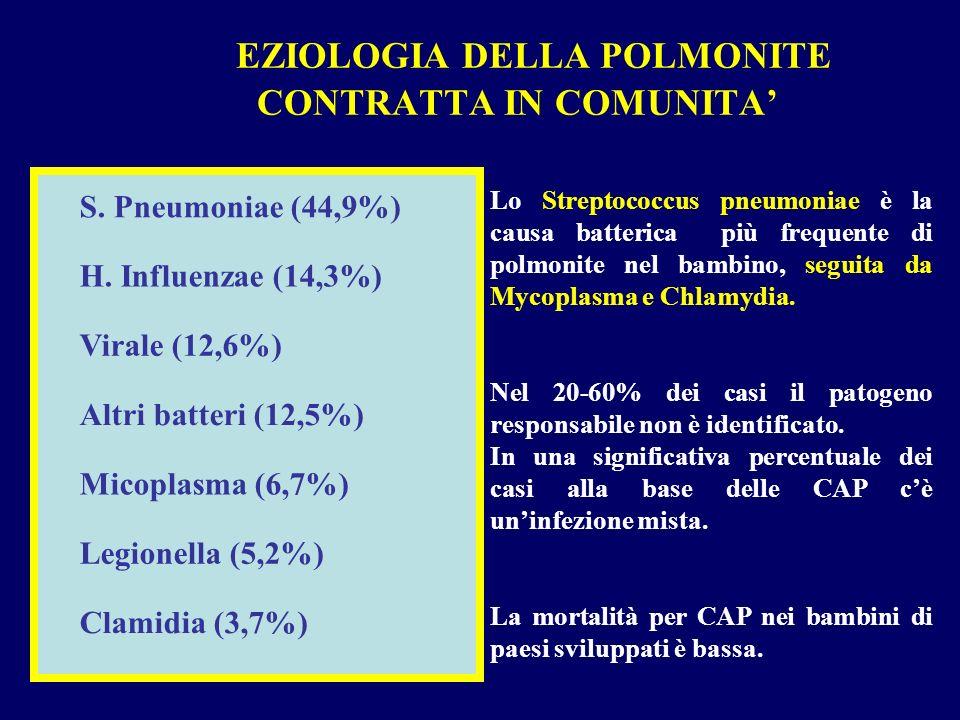 Micoplasma (6,7%) Altri batteri (12,5%) Virale (12,6%) H. Influenzae (14,3%) S. Pneumoniae (44,9%) Clamidia (3,7%) Legionella (5,2%) Lo Streptococcus
