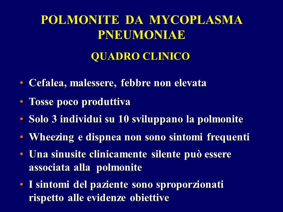 QUADRO CLINICO Cefalea, malessere, febbre non elevataCefalea, malessere, febbre non elevata Tosse poco produttivaTosse poco produttiva Solo 3 individu