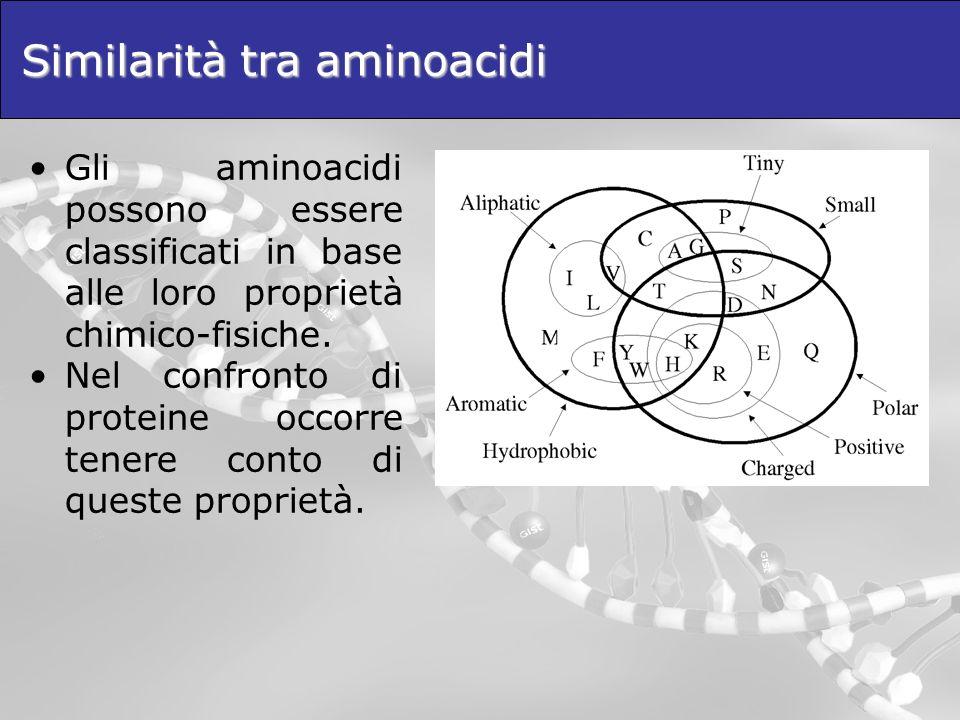 Similarità tra aminoacidi Gli aminoacidi possono essere classificati in base alle loro proprietà chimico-fisiche. Nel confronto di proteine occorre te