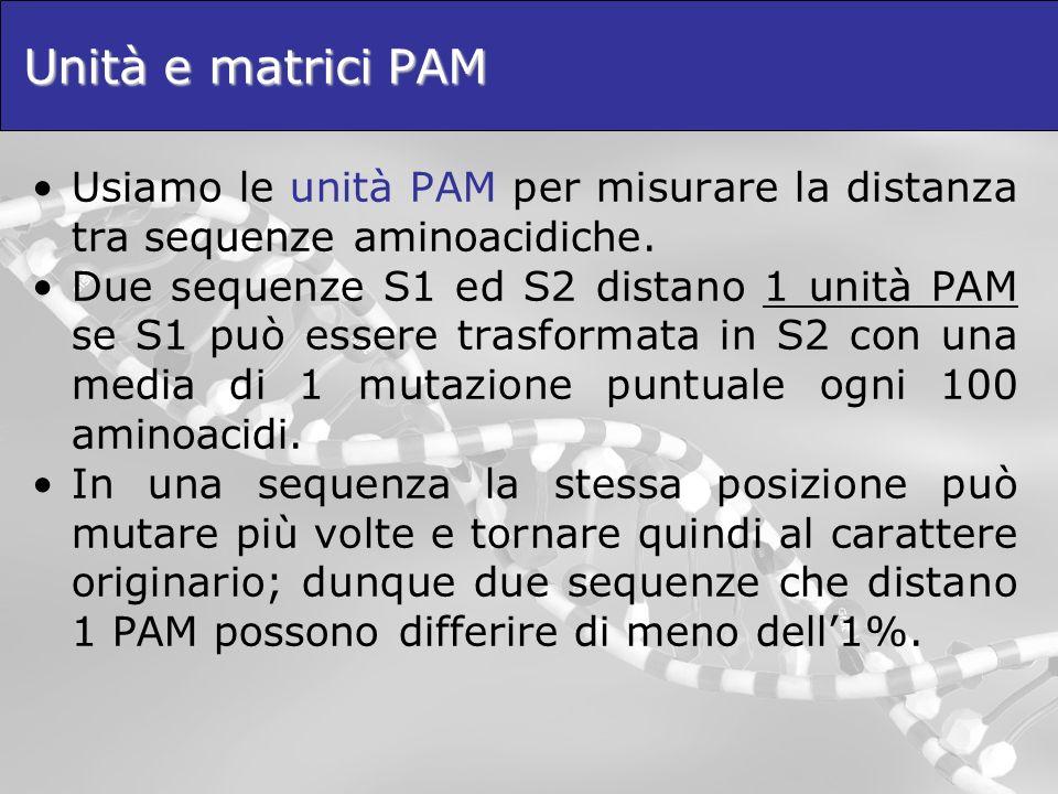 Unità e matrici PAM Usiamo le unità PAM per misurare la distanza tra sequenze aminoacidiche. Due sequenze S1 ed S2 distano 1 unità PAM se S1 può esser