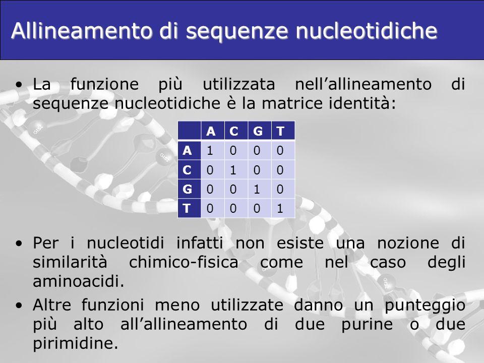 Allineamento di sequenze nucleotidiche La funzione più utilizzata nellallineamento di sequenze nucleotidiche è la matrice identità: Per i nucleotidi i