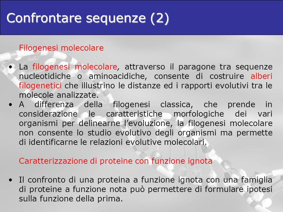 Confrontare sequenze (2) Filogenesi molecolare La filogenesi molecolare, attraverso il paragone tra sequenze nucleotidiche o aminoacidiche, consente d