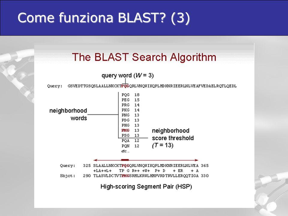 Come funziona BLAST? (3)