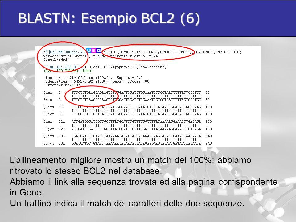 BLASTN: Esempio BCL2 (6) Lallineamento migliore mostra un match del 100%: abbiamo ritrovato lo stesso BCL2 nel database. Abbiamo il link alla sequenza