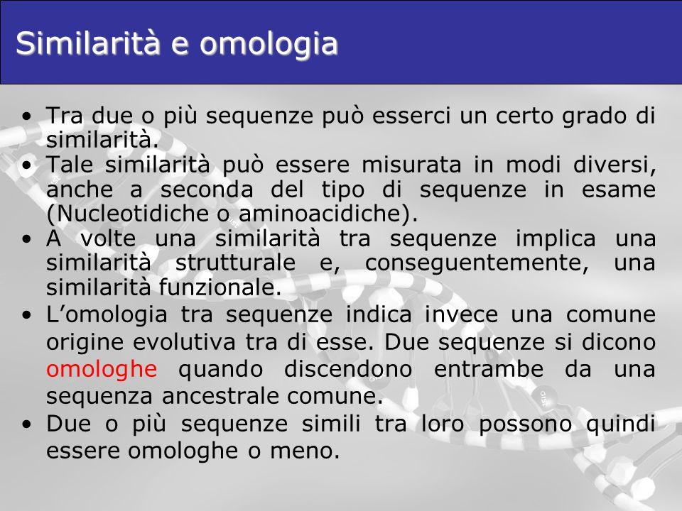 Similarità e omologia Tra due o più sequenze può esserci un certo grado di similarità. Tale similarità può essere misurata in modi diversi, anche a se