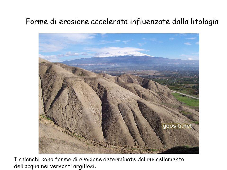 Forme di erosione accelerata influenzate dalla litologia I calanchi sono forme di erosione determinate dal ruscellamento dellacqua nei versanti argill