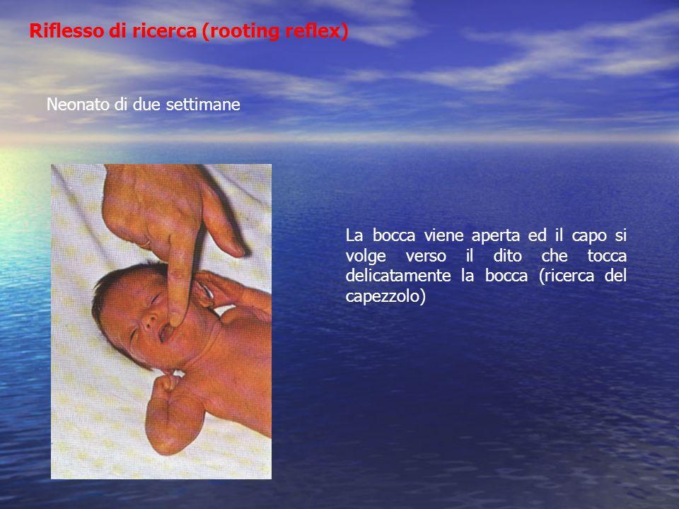 Riflesso di ricerca (rooting reflex) Neonato di due settimane La bocca viene aperta ed il capo si volge verso il dito che tocca delicatamente la bocca