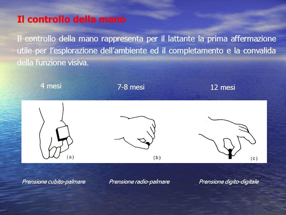 Il controllo della mano Il controllo della mano rappresenta per il lattante la prima affermazione utile per lesplorazione dellambiente ed il completam