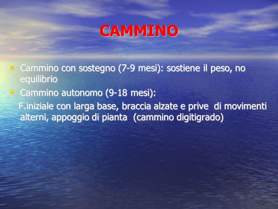 CAMMINO Cammino con sostegno (7-9 mesi): sostiene il peso, no equilibrio Cammino con sostegno (7-9 mesi): sostiene il peso, no equilibrio Cammino auto