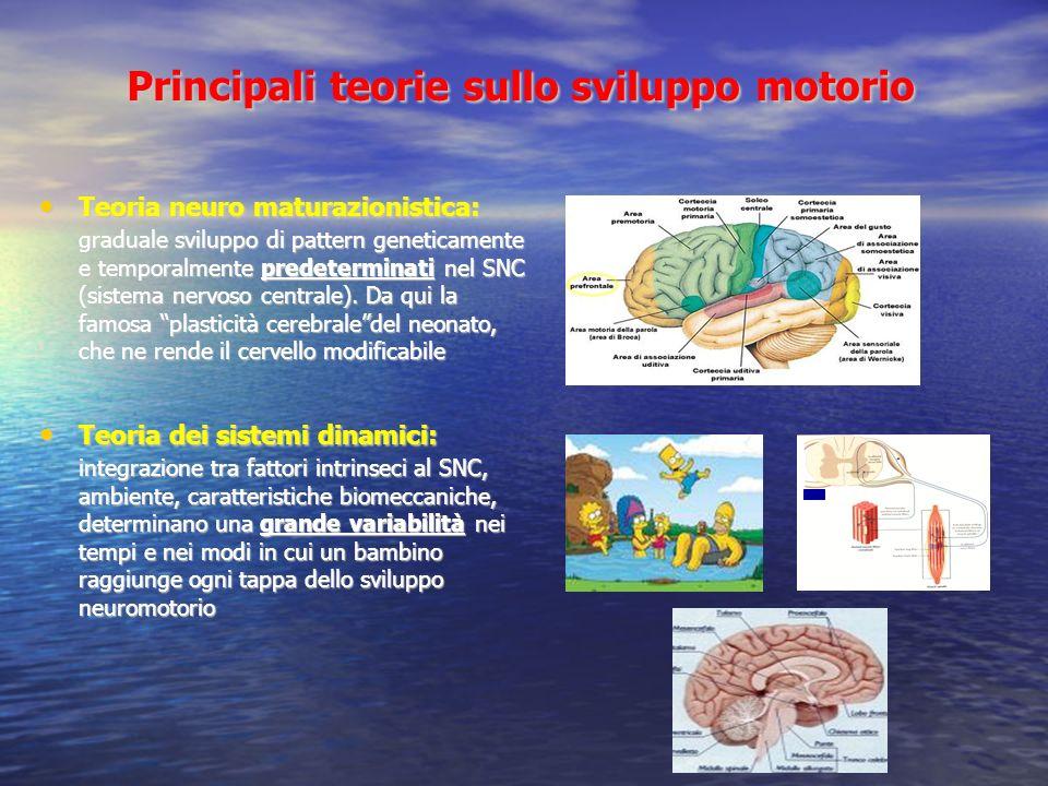 Principali teorie sullo sviluppo motorio Teoria neuro maturazionistica: graduale sviluppo di pattern geneticamente e temporalmente predeterminati nel