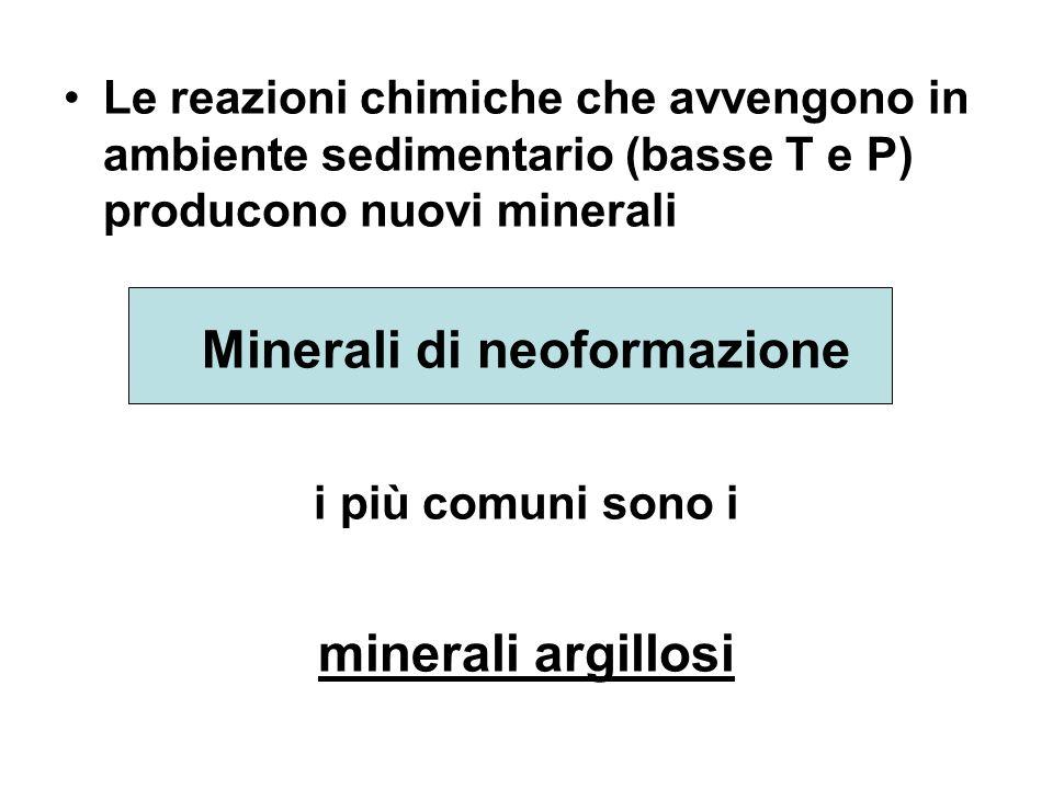 Le reazioni chimiche che avvengono in ambiente sedimentario (basse T e P) producono nuovi minerali Minerali di neoformazione i più comuni sono i miner