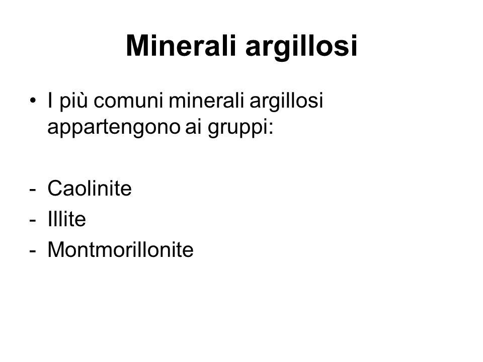 Minerali argillosi I più comuni minerali argillosi appartengono ai gruppi: -Caolinite -Illite -Montmorillonite