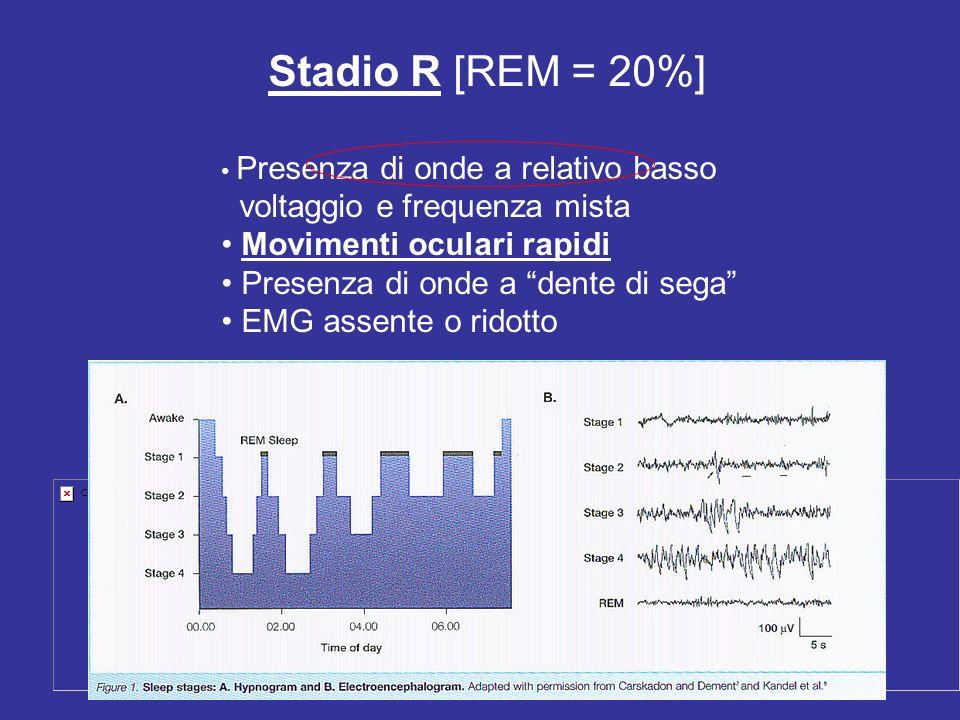 Stadio R [REM = 20%] Presenza di onde a relativo basso voltaggio e frequenza mista Movimenti oculari rapidi Presenza di onde a dente di sega EMG assen