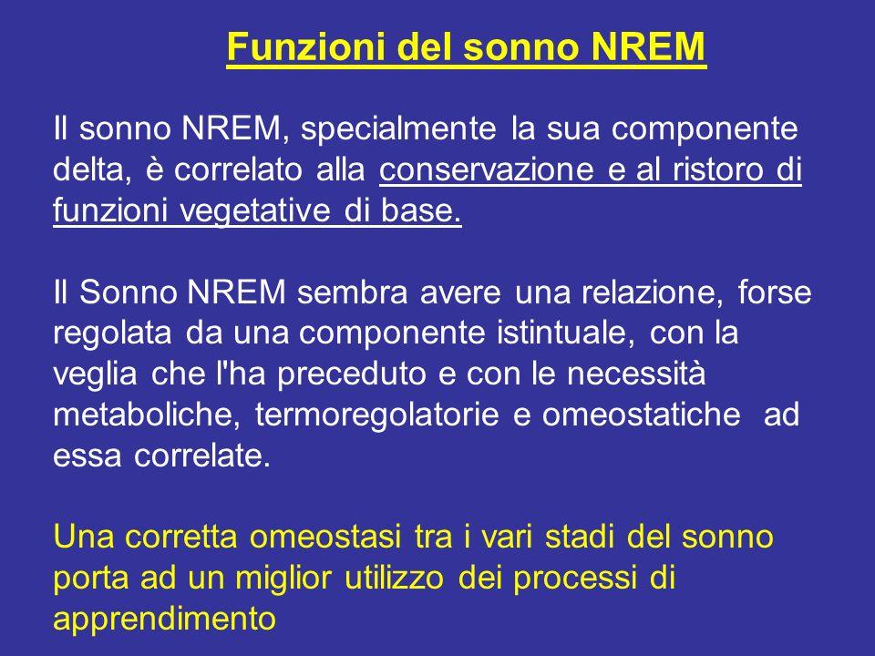 Il sonno NREM, specialmente la sua componente delta, è correlato alla conservazione e al ristoro di funzioni vegetative di base. Il Sonno NREM sembra
