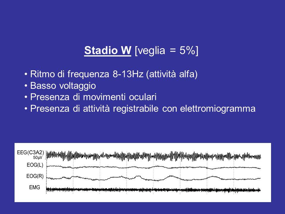Stadio W [veglia = 5%] Ritmo di frequenza 8-13Hz (attività alfa) Basso voltaggio Presenza di movimenti oculari Presenza di attività registrabile con e