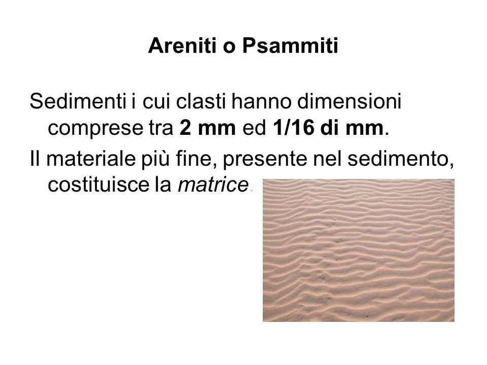 Areniti o Psammiti Sedimenti i cui clasti hanno dimensioni comprese tra 2 mm ed 1/16 di mm. Il materiale più fine, presente nel sedimento, costituisce