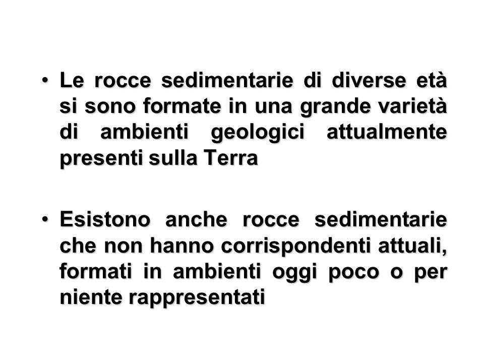 Le rocce sedimentarie di diverse età si sono formate in una grande varietà di ambienti geologici attualmente presenti sulla TerraLe rocce sedimentarie di diverse età si sono formate in una grande varietà di ambienti geologici attualmente presenti sulla Terra Esistono anche rocce sedimentarie che non hanno corrispondenti attuali, formati in ambienti oggi poco o per niente rappresentatiEsistono anche rocce sedimentarie che non hanno corrispondenti attuali, formati in ambienti oggi poco o per niente rappresentati