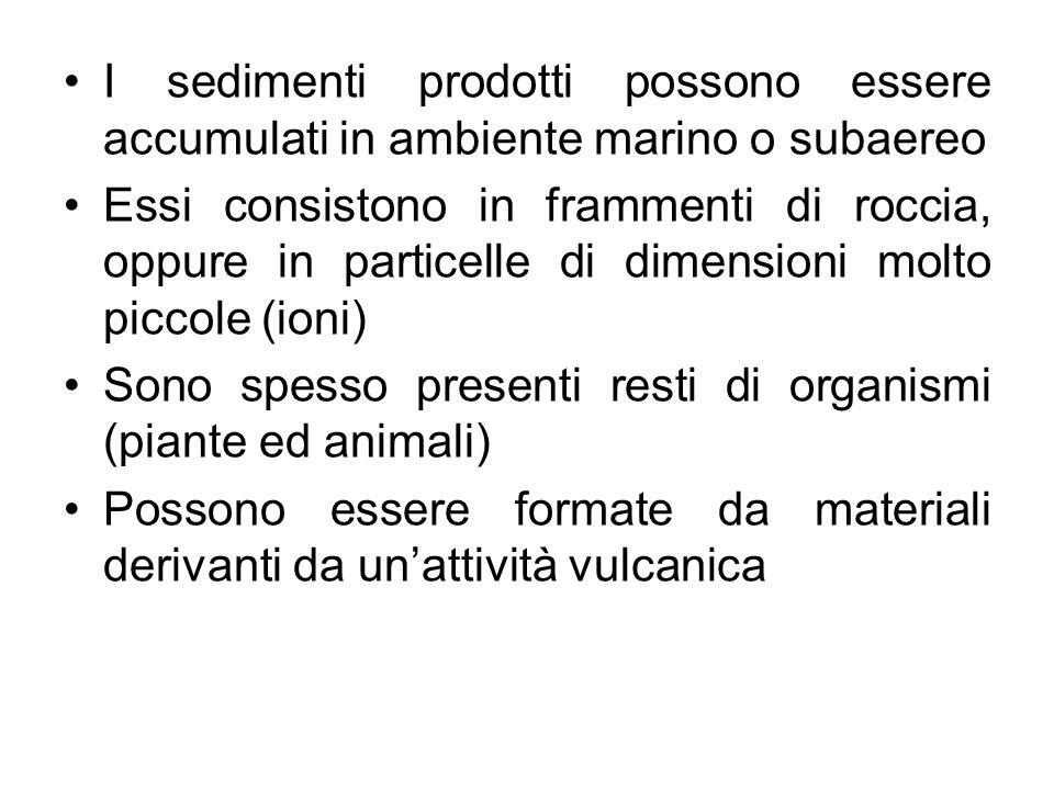 I sedimenti prodotti possono essere accumulati in ambiente marino o subaereo Essi consistono in frammenti di roccia, oppure in particelle di dimension