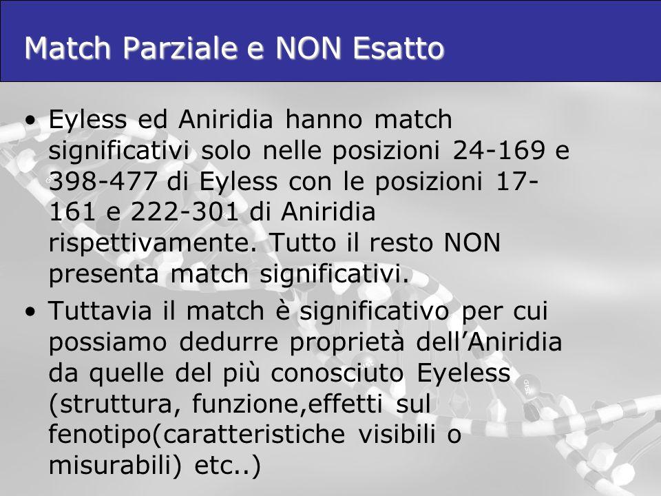 Match Parziale e NON Esatto Eyless ed Aniridia hanno match significativi solo nelle posizioni 24-169 e 398-477 di Eyless con le posizioni 17- 161 e 22