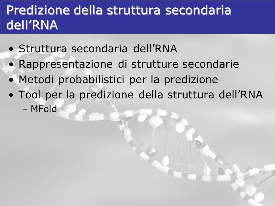 Predizione della struttura secondaria dellRNA Struttura secondaria dellRNA Rappresentazione di strutture secondarie Metodi probabilistici per la predi