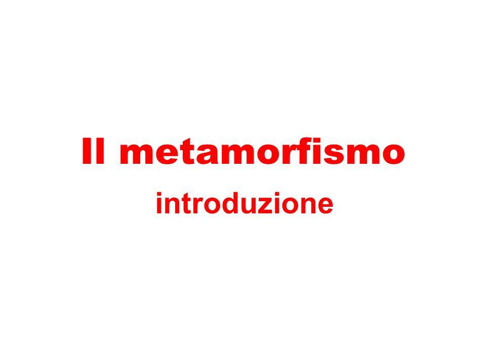 Il metamorfismo introduzione