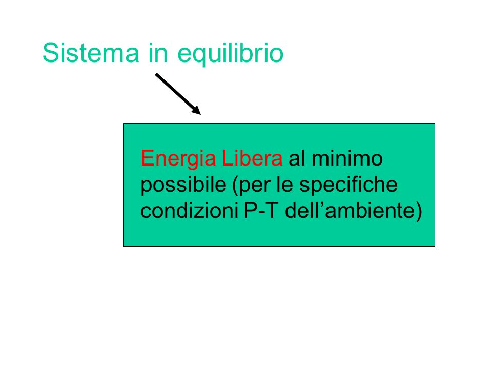 Sistema in equilibrio Energia Libera al minimo possibile (per le specifiche condizioni P-T dellambiente)