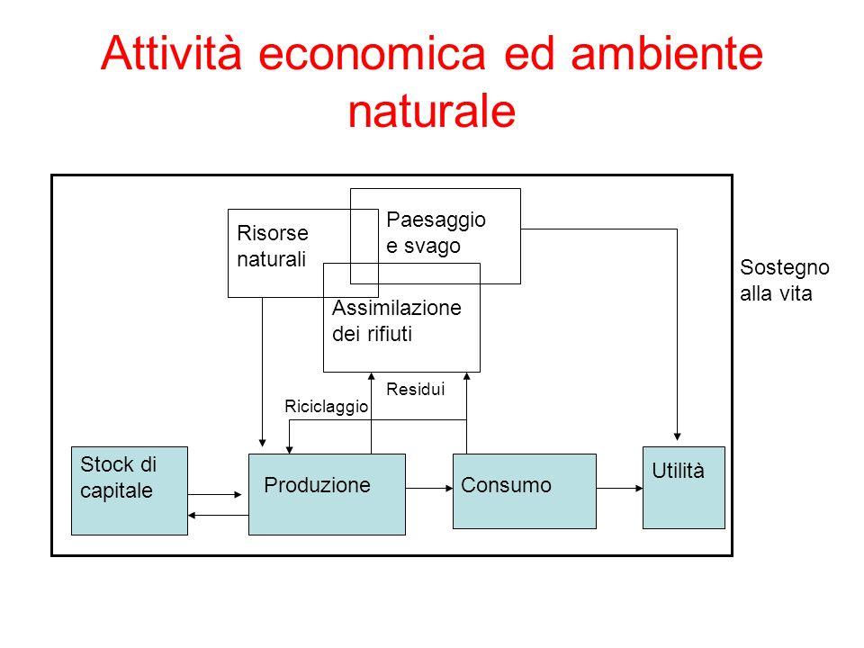 Attività economica ed ambiente naturale Stock di capitale Paesaggio e svago Risorse naturali Assimilazione dei rifiuti Sostegno alla vita ProduzioneCo