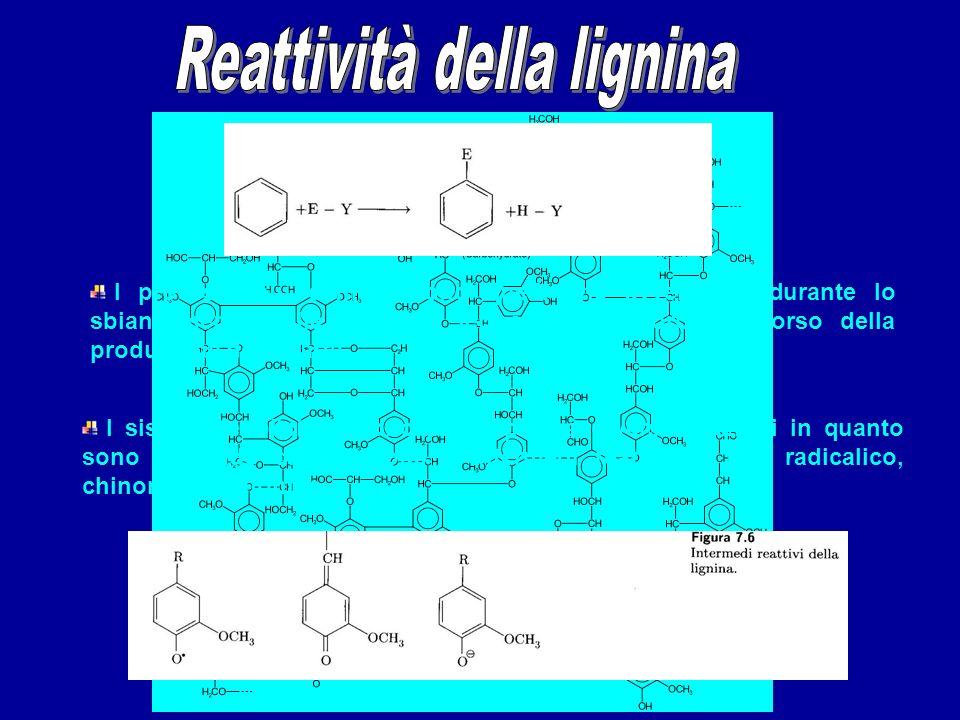 Per la presenza dei gruppi fenolici e carbossilici la lignina è sensibile allattacco delle basi; la formazione di sali la rende disponibile a reazioni di ossidazione.