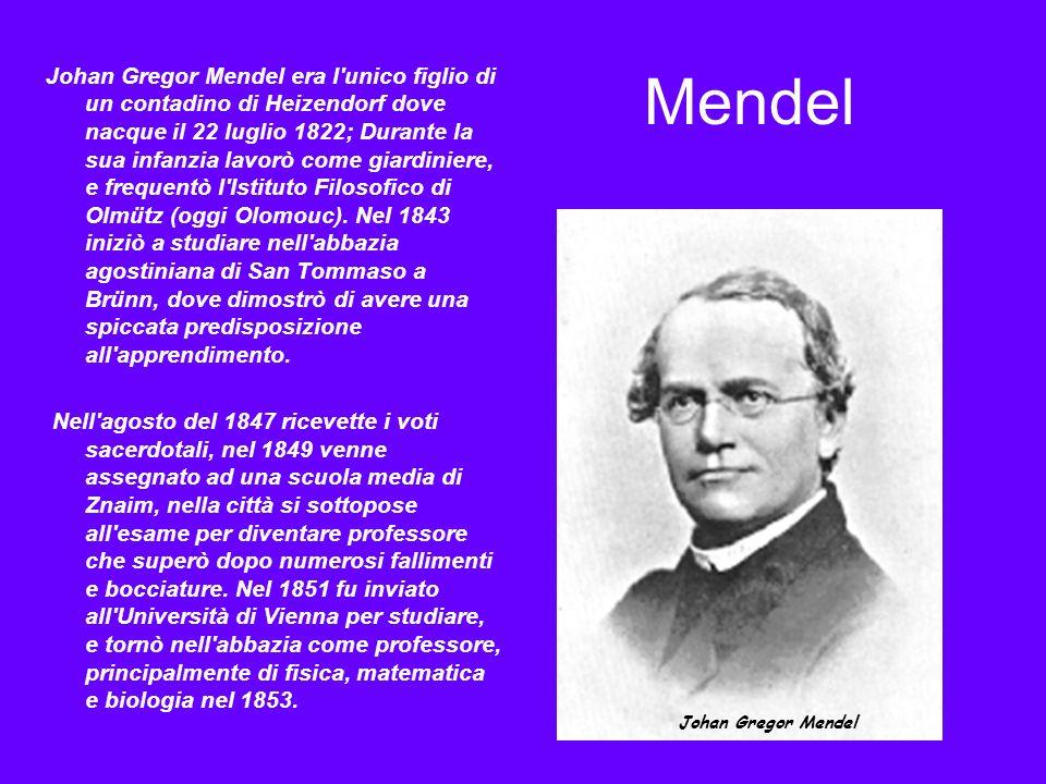 Levoluzione della Genetica forense: la storia dei marcatori genetici 1)Il sistema del gruppo sanguigno AB0, scoperto nel 1900 da Karl Landsteiner.
